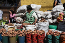 Selling potatoes on the local market.